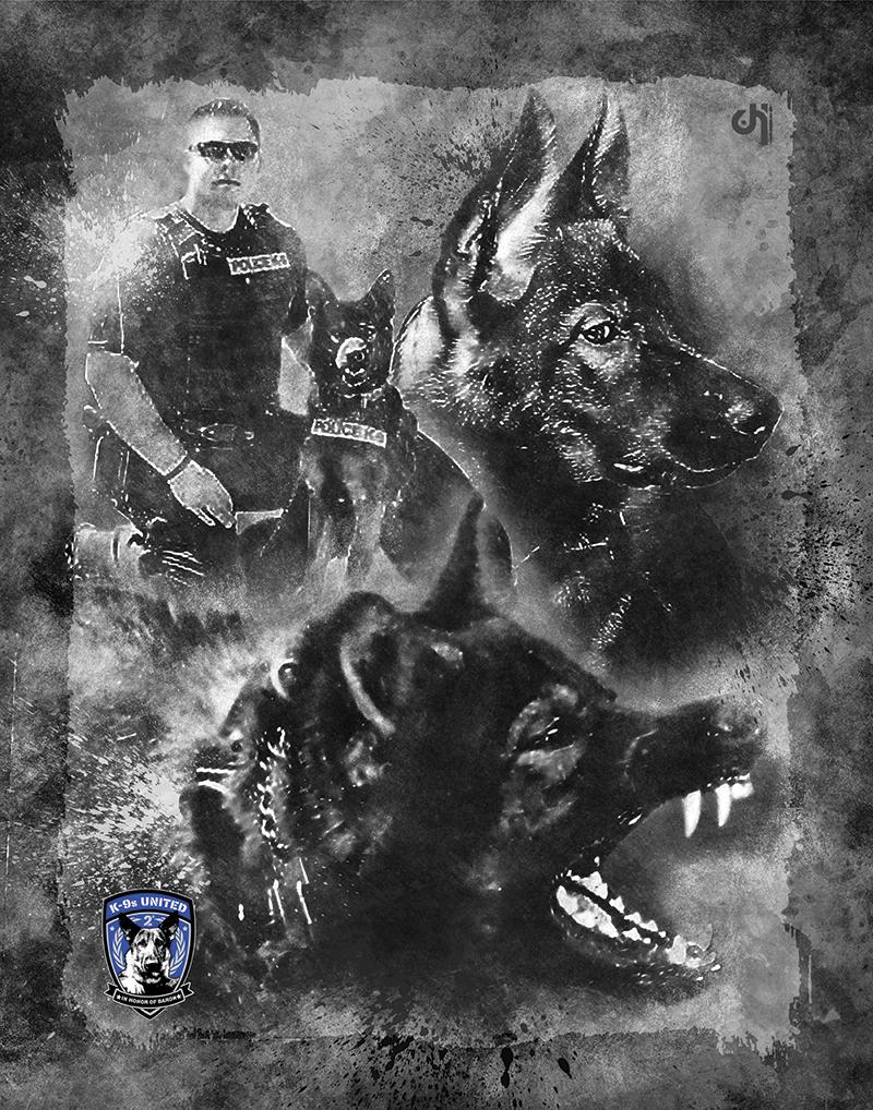 K9 Argo Normandy Police Dept EOW 11-7-17.jpg