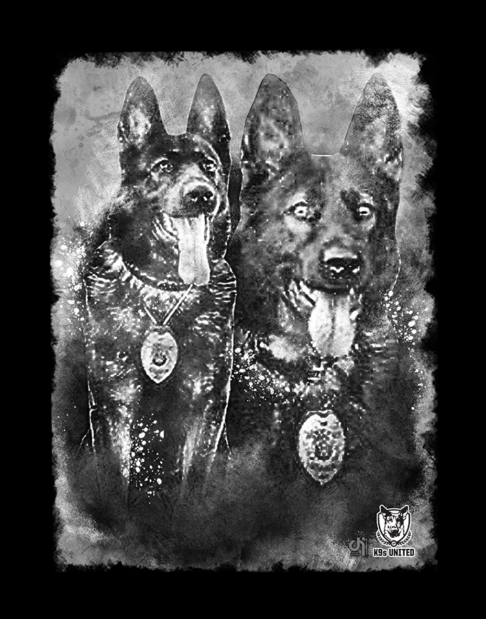K9-Choper-Canvas.png