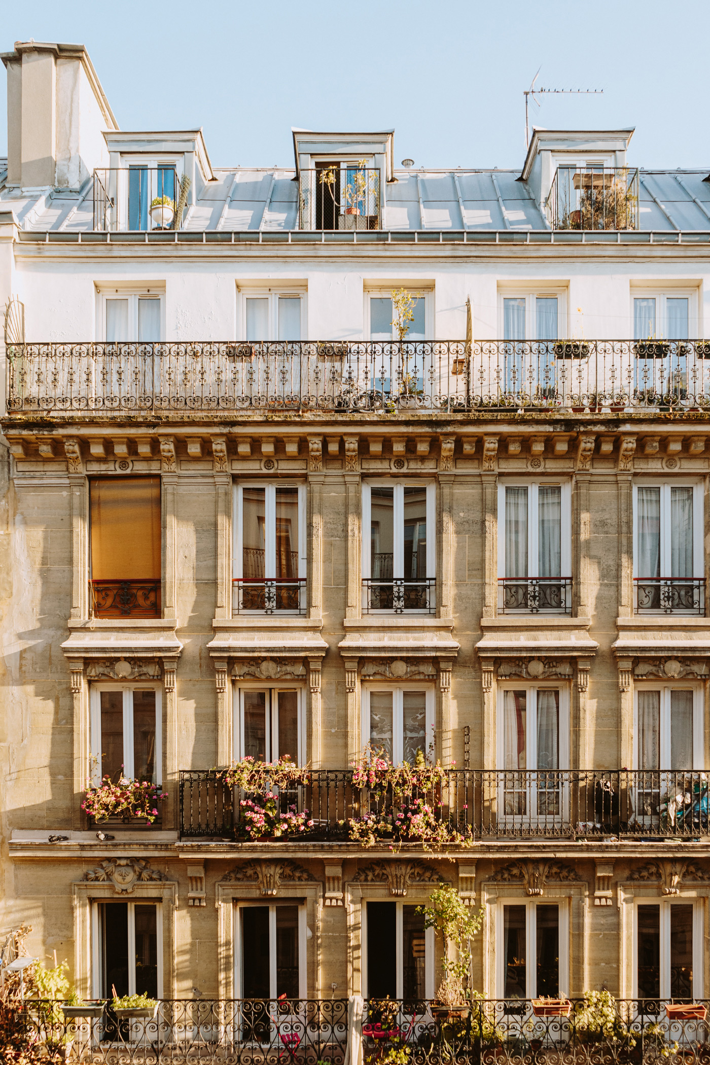 Paris, France by Jessie May