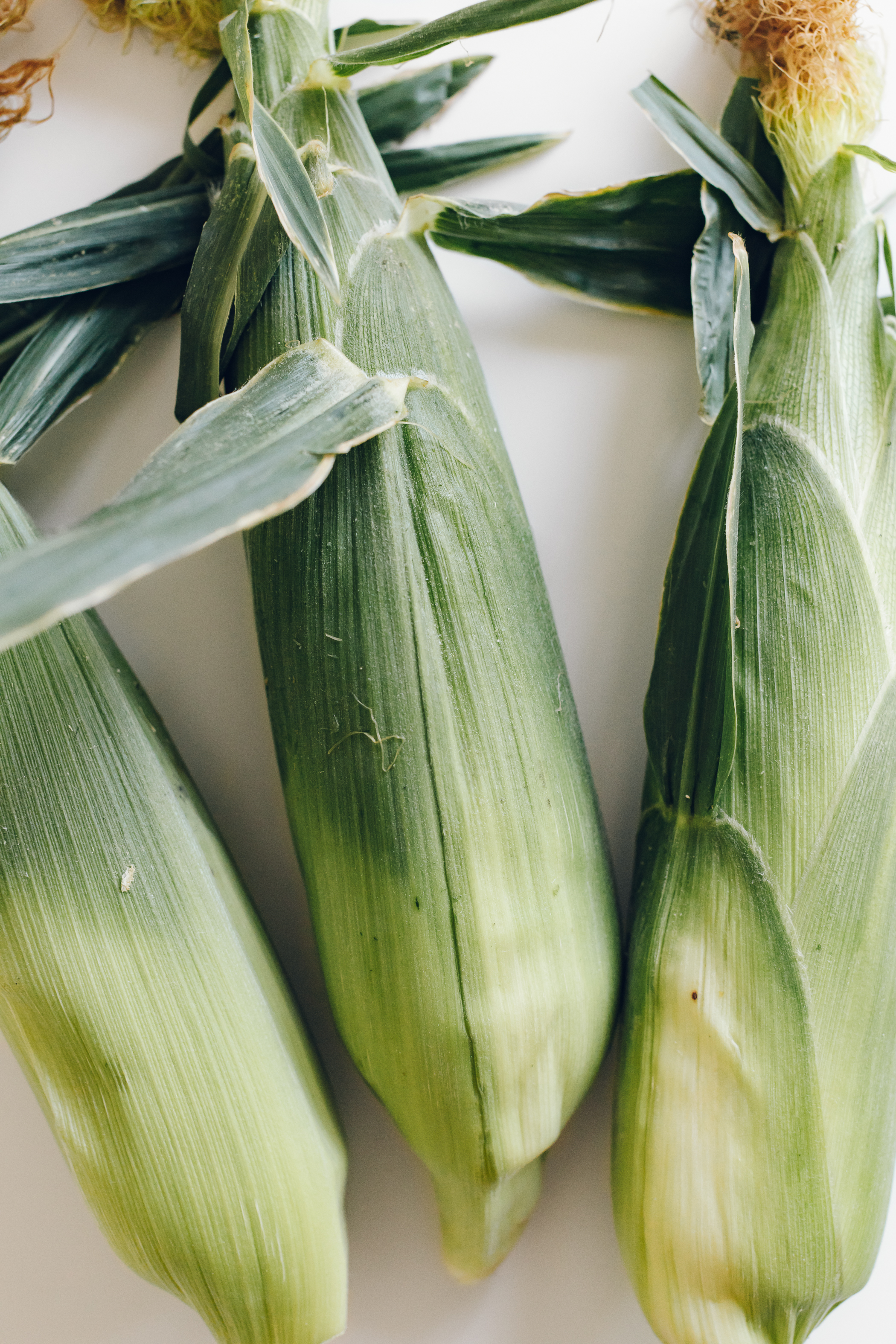 How to select: - Look for corn husks that are bright green and look fresh. Avoid husks that appear dry, or that are peeling away from the cob.Give the cob a squeeze, and pick ones with the least amount of air gap between the husks and the kernels. It is preferable for them to be tightly packed.You can peel back a piece of the husk to check to make sure the kernels are plump and tightly packed together. But once you find a stand/store where you can trust their corn, try not to do this and leave them tightly sealed until ready to use.