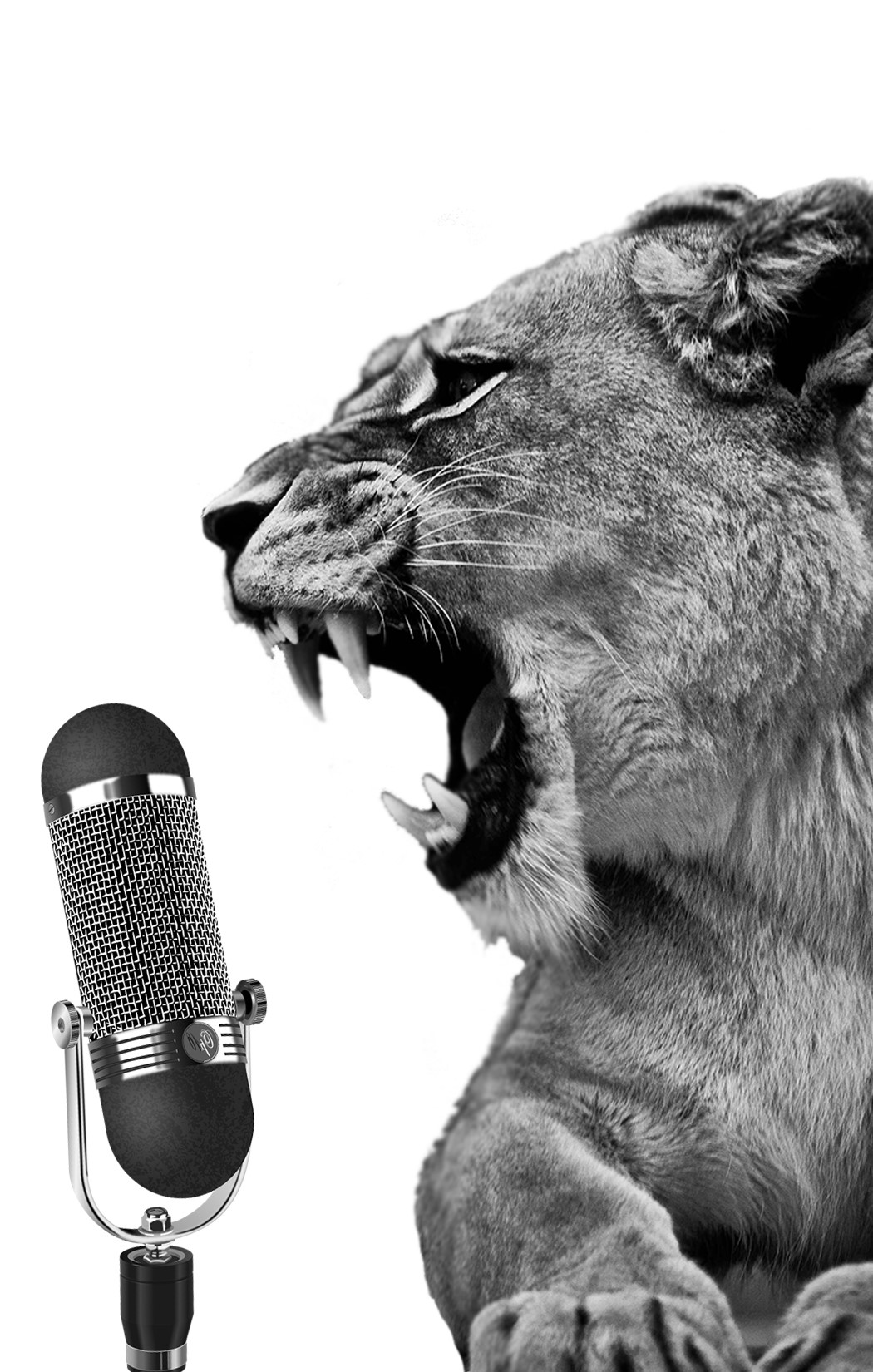 Podcasts - Rants & Roars, The Petting Zoo, and Relatively Random Podcasts can be found here!Looking for your weekly GAMING fix? That's probably here too!