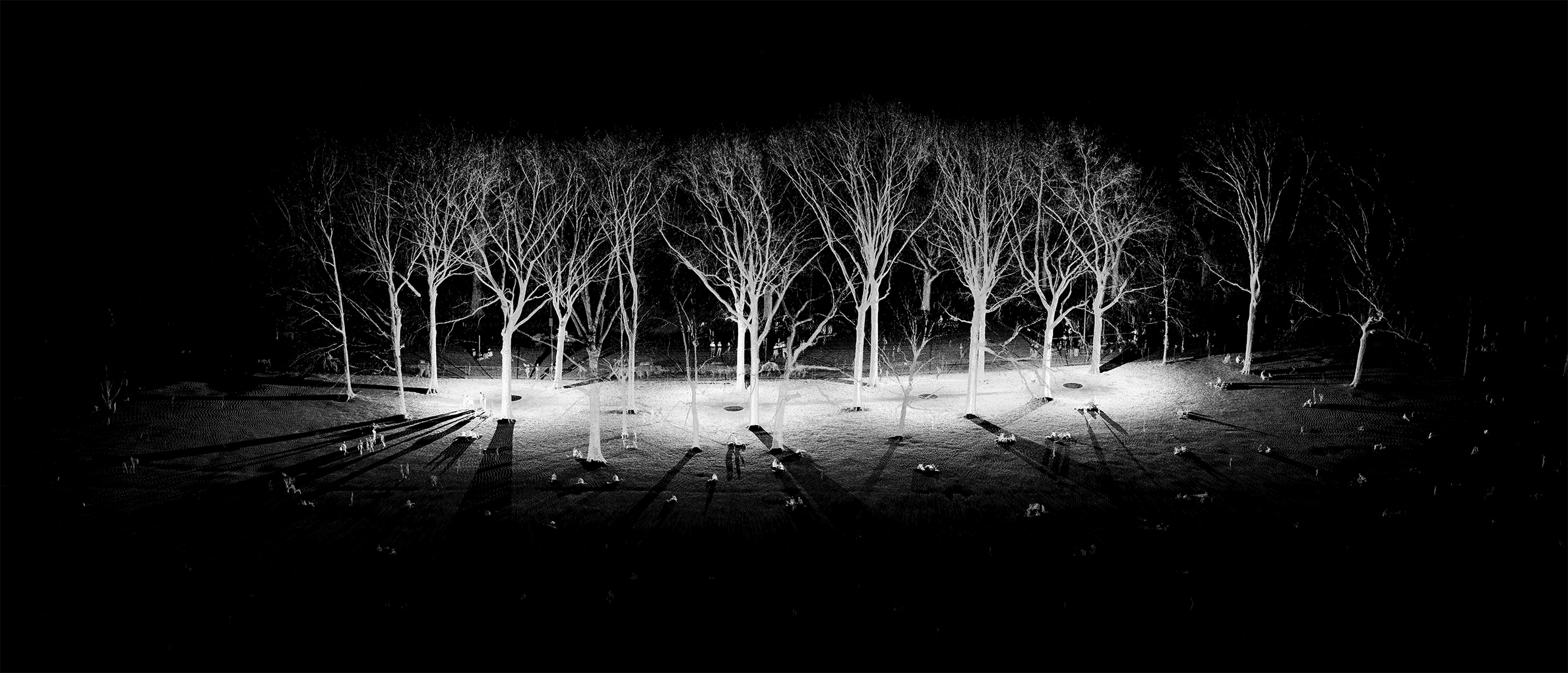 mynd-workshop-central-park-sheep-meadow-trees-8-1-3D-laser-scanning-point-cloud-new-york.jpg