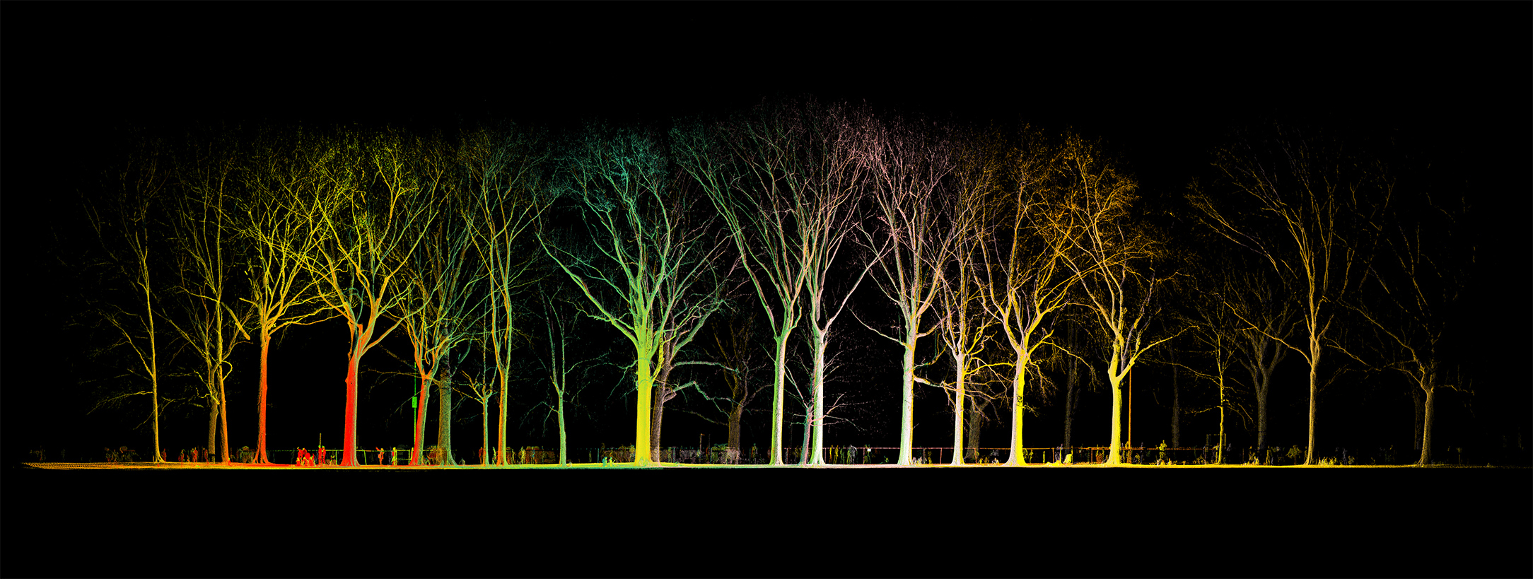 mynd-workshop-central-park-sheep-meadow-trees-15-3D-laser-scanning-point-cloud-new-york.jpg