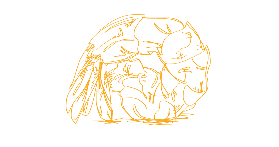shrimpdrawing.png