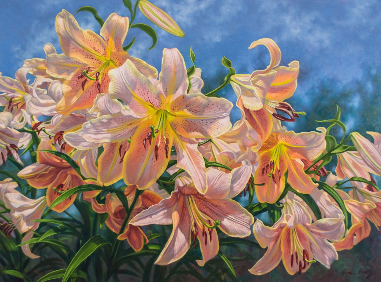 Oriental Lilies: Red Hot