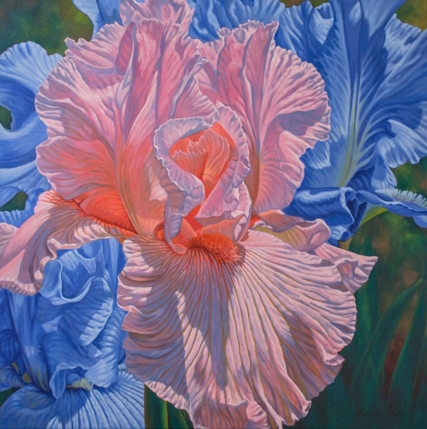 Floralscape 1: Pink and Blue Irises
