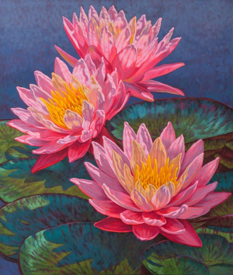 Water Lilies: Sunfire