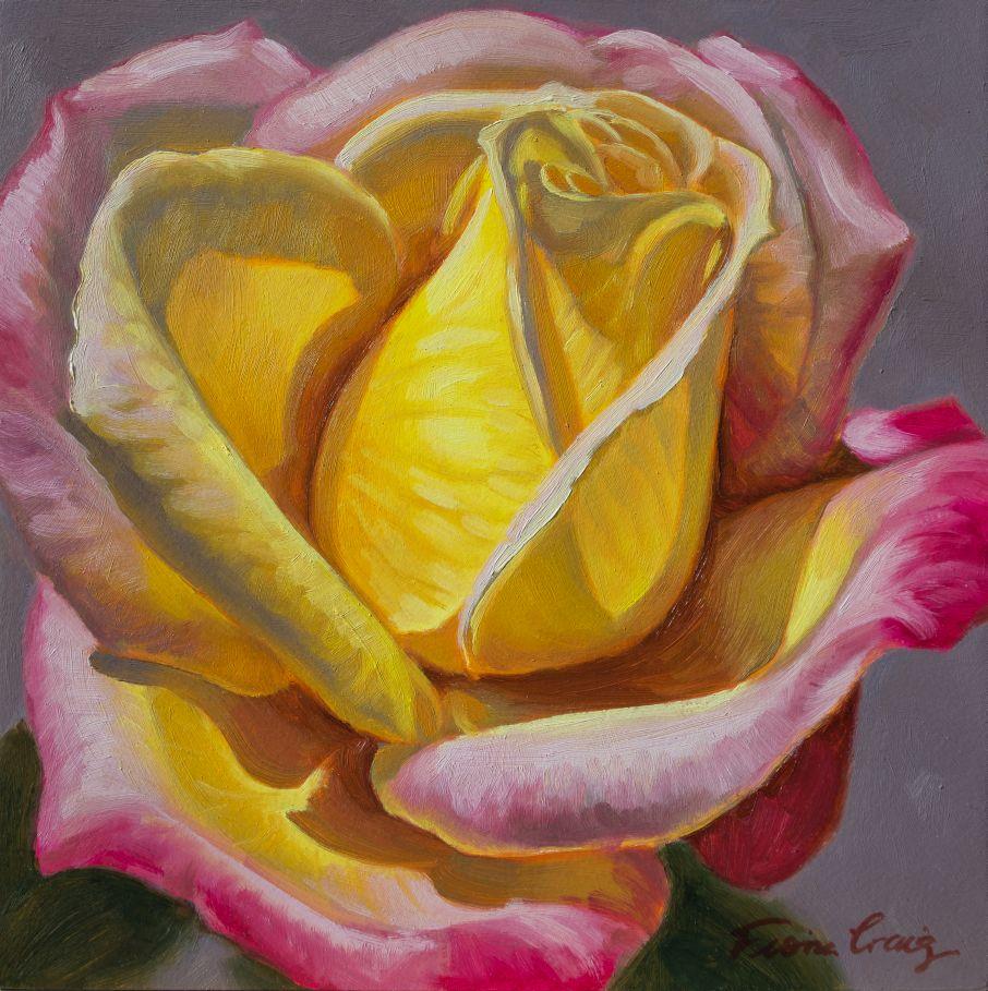 Sunlit Rose, 4