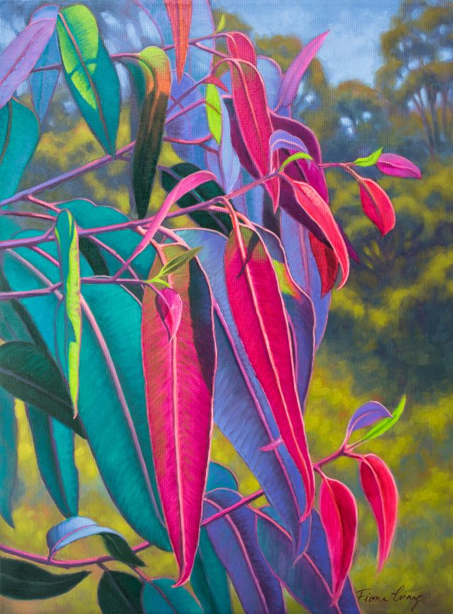 "Sunlit Gumleaves series - Sunlit Gumleaves 17, Fiona Craig, oils, 18"" x 24"". Private collection."