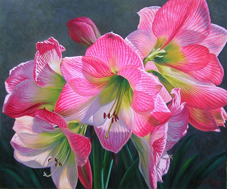 Apple Blossom Lilies