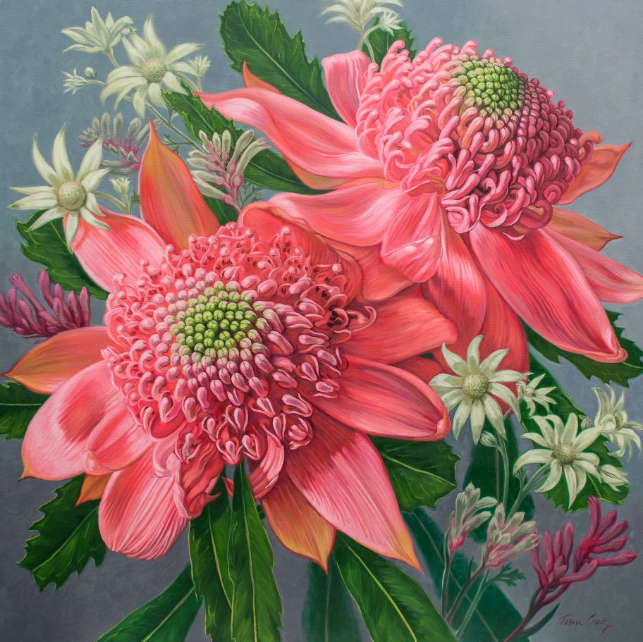 "'Pink Waratahs 1' - Oils on poly-cotton canvas, 42"" x 42""."
