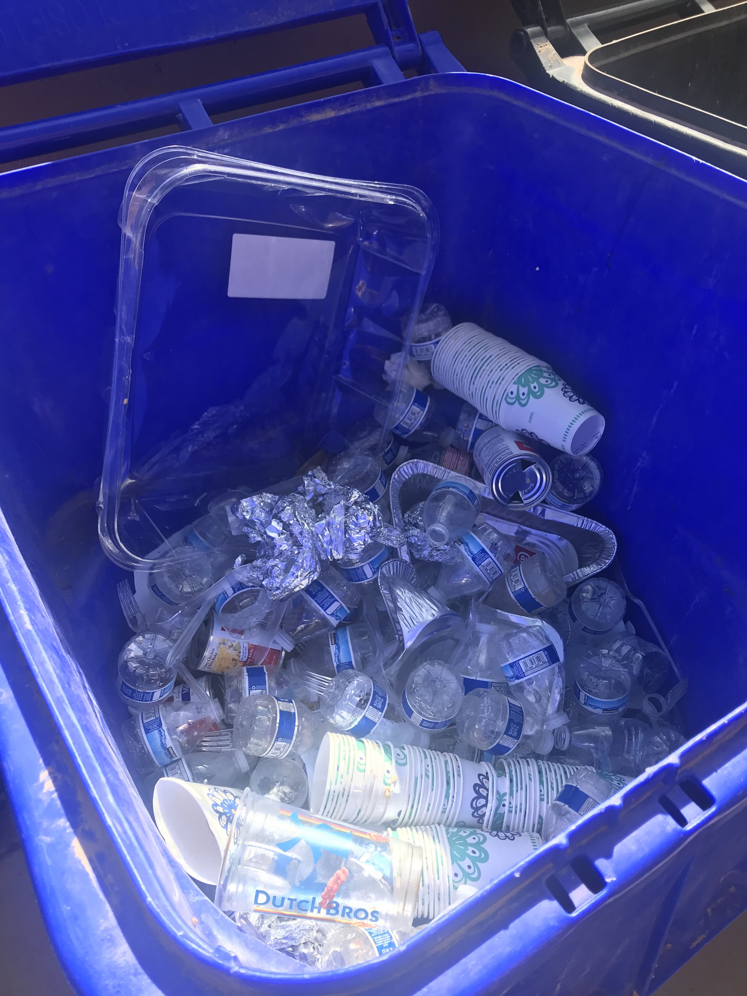 This was completely filled with recycling by the time we finished sorting