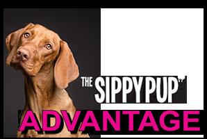 SP-advantage2.png