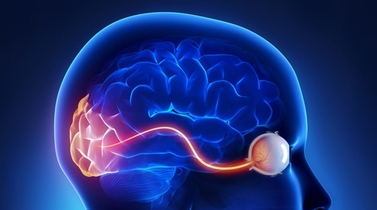 Concussion Symptoms: - - double vision- blurred vision / fluctuating vision- Headaches- dizziness- sensitivity to bright lights- poor reading comprehension