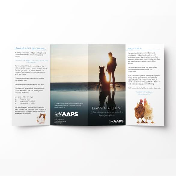 Graphic-Design-folded-brochure.jpg