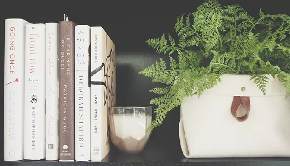 Plants are a great way to add life and color to your bookshelf decor! Use your Binny to house your favorite greenery, giving height and a unique factor.
