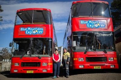 Bus3of6-1.jpg