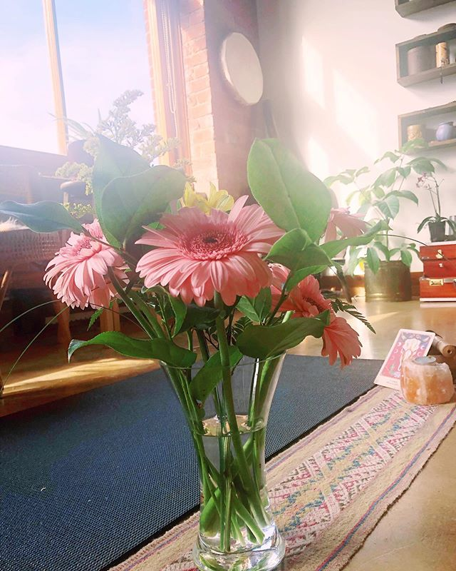 Feeling loved by our community! Thank you Eszter for the lovely bouquet of flowers ~ they added so much LIFE to this morning's Yoga + Tea elemental practice ✨🍃💗🌞 Whose joining us for Sacred Honey Ceremony tonight with @jennaweiller ? 🐝 🍯