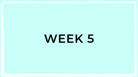 week5.png