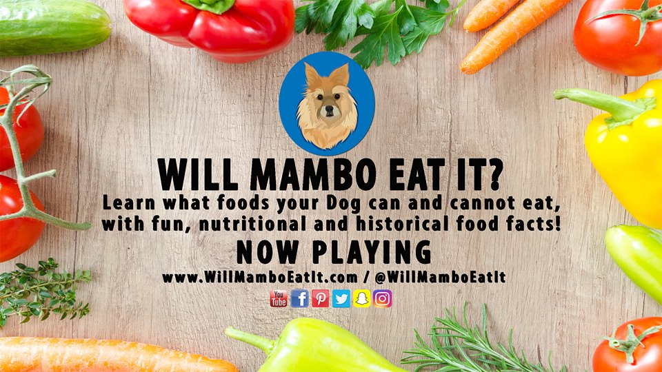 Will Mambo Eat It cover photo.jpg