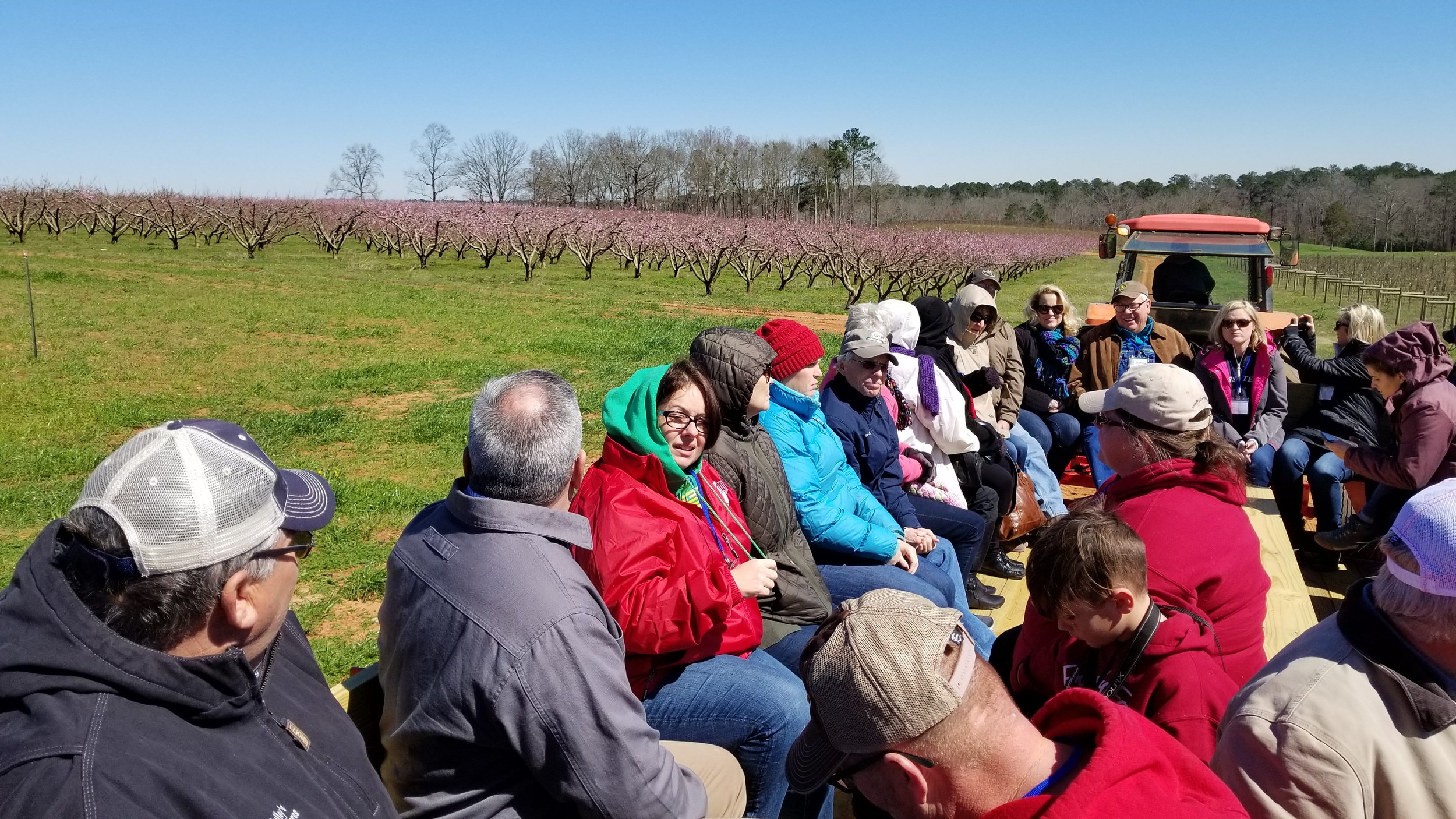 Touring the peach orchard at Southern Belle Farm in Fort Valley, Georgia (and yes — it was a chilly ride)