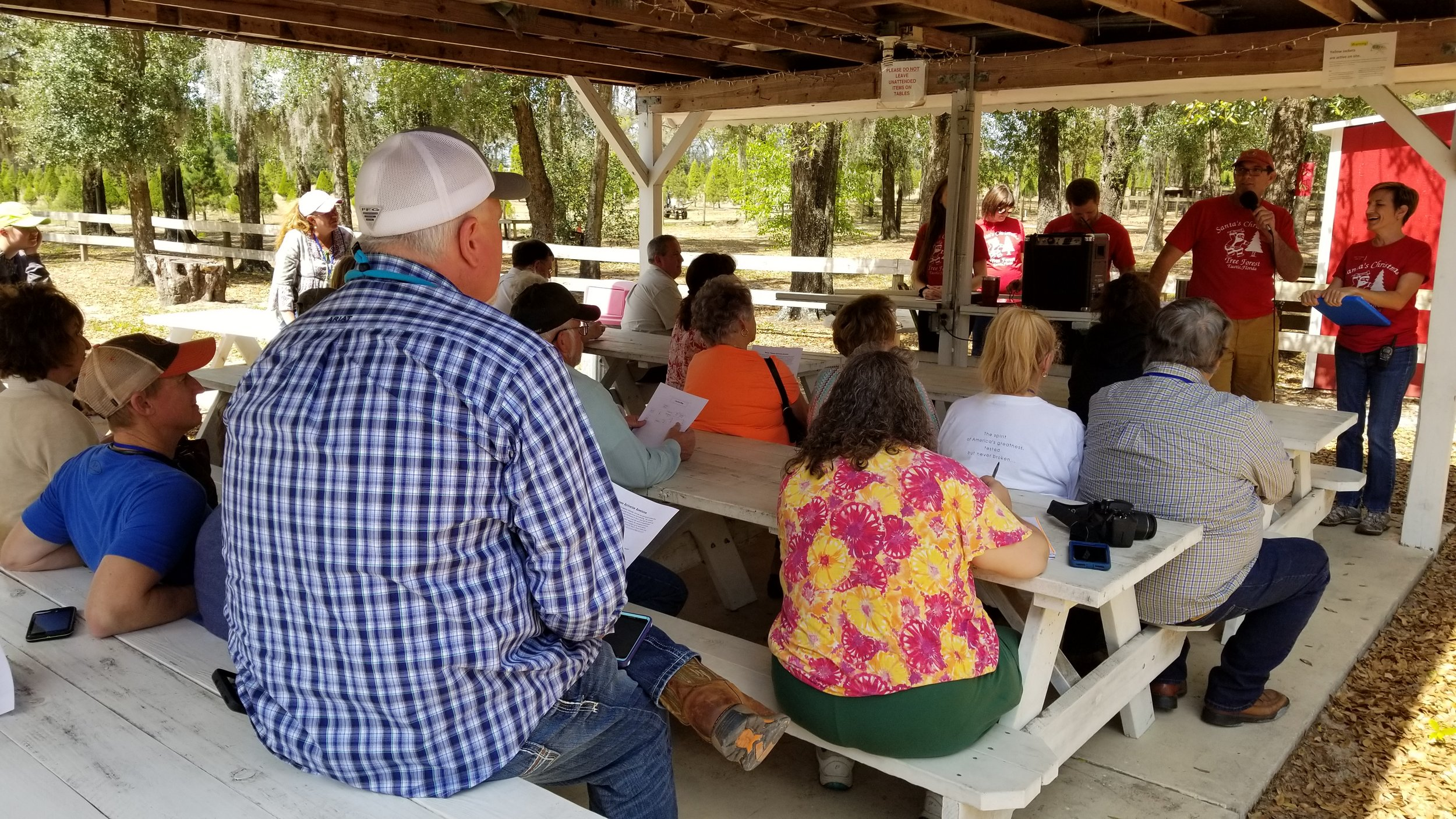 Learning about Santa's Christmas Tree Farm in Eustis, Florida