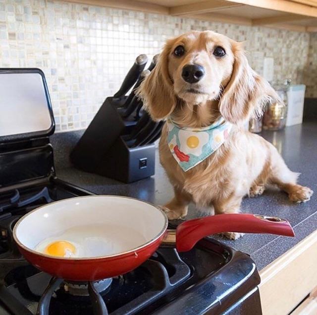 eggs bacon.jpg