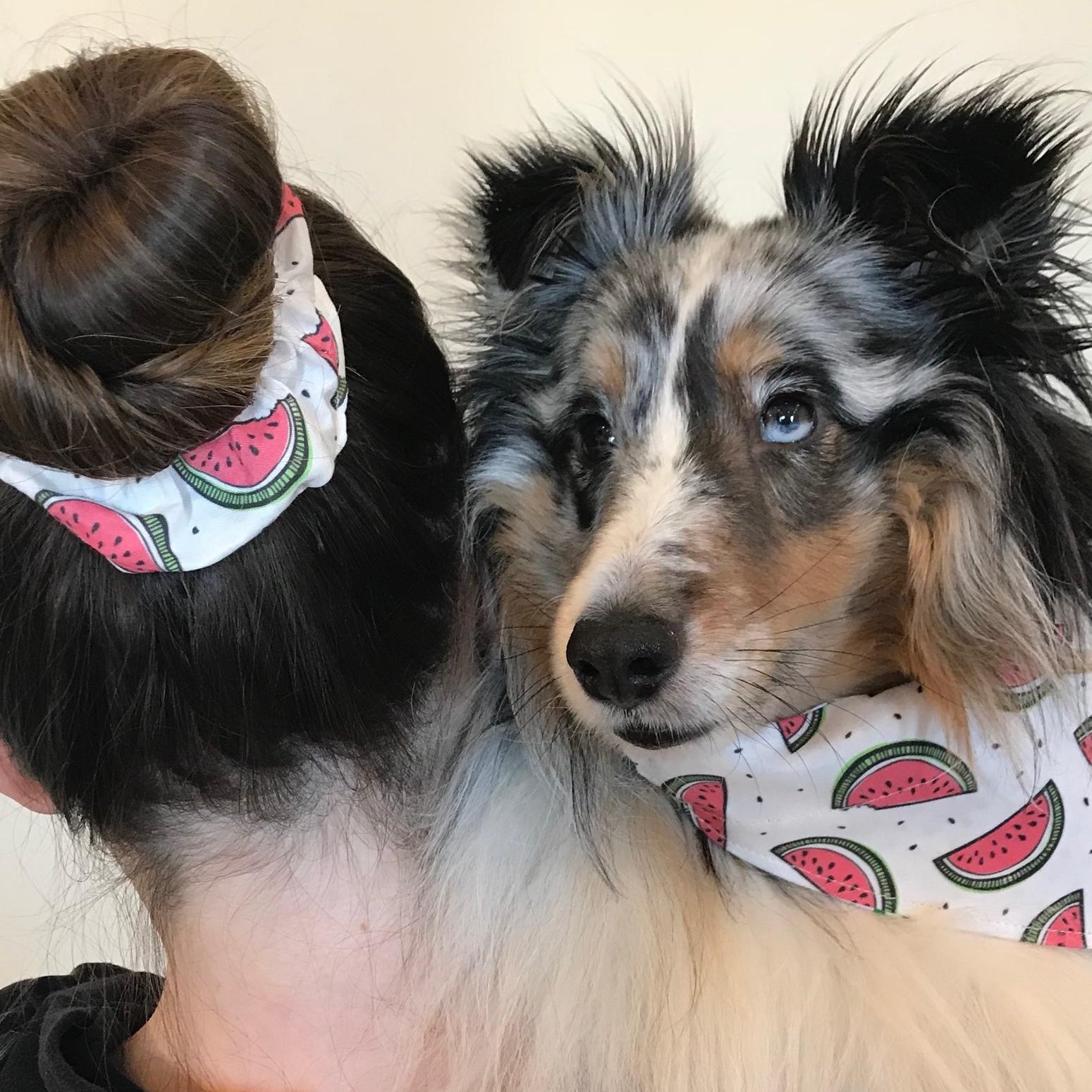 hair scrunchie 1.jpg