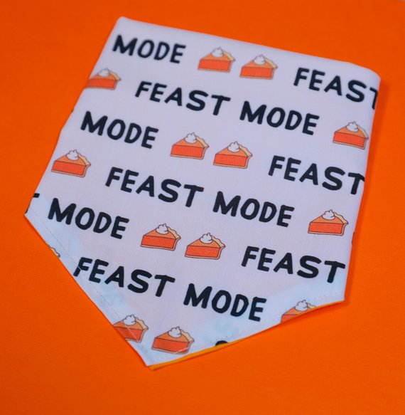 feast mode.jpg