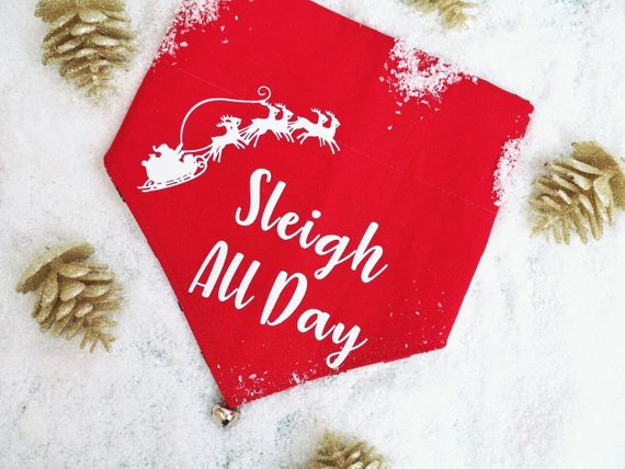 sleighh.jpg
