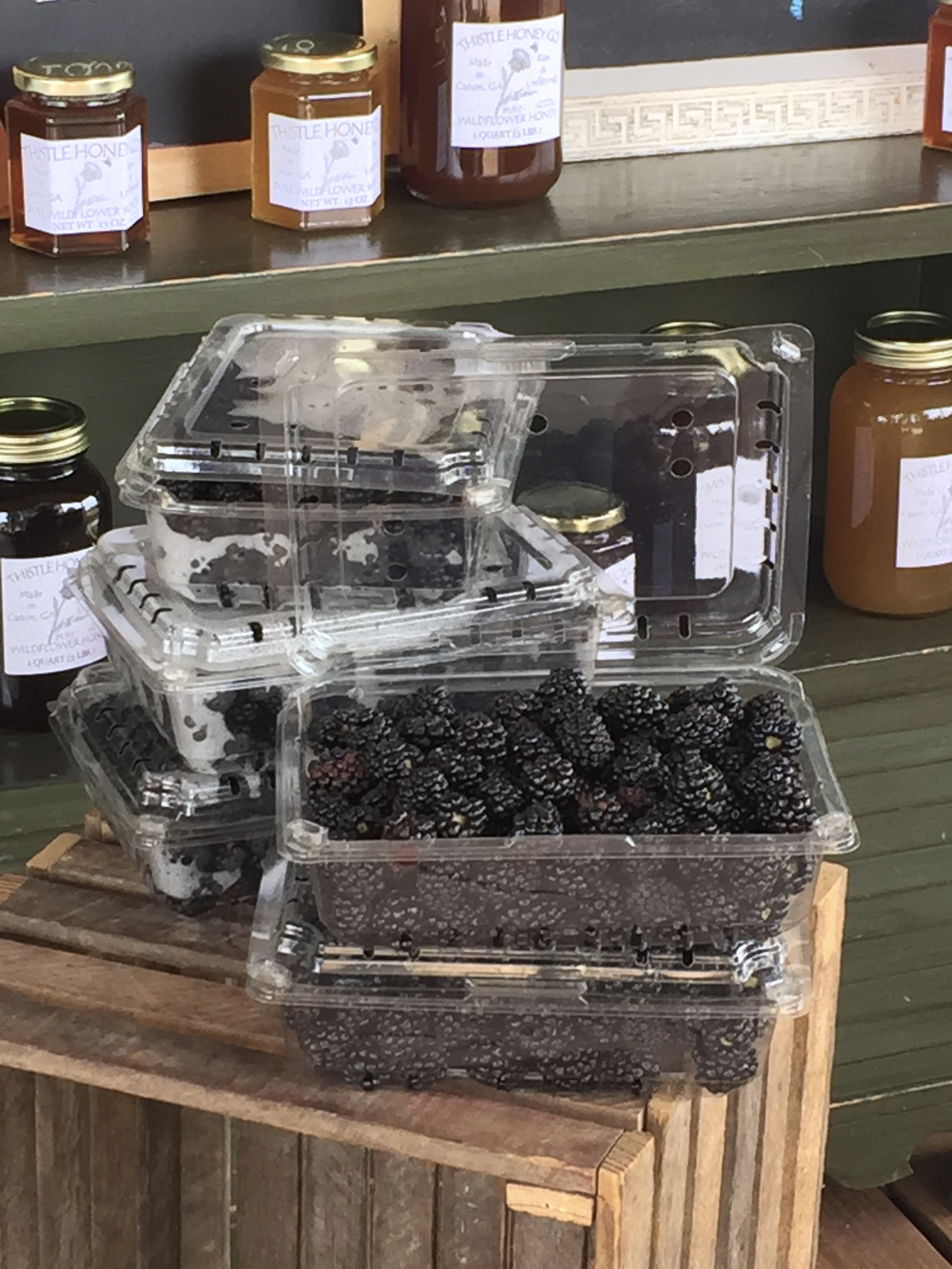 Blackberries | Gallon clamshell $30