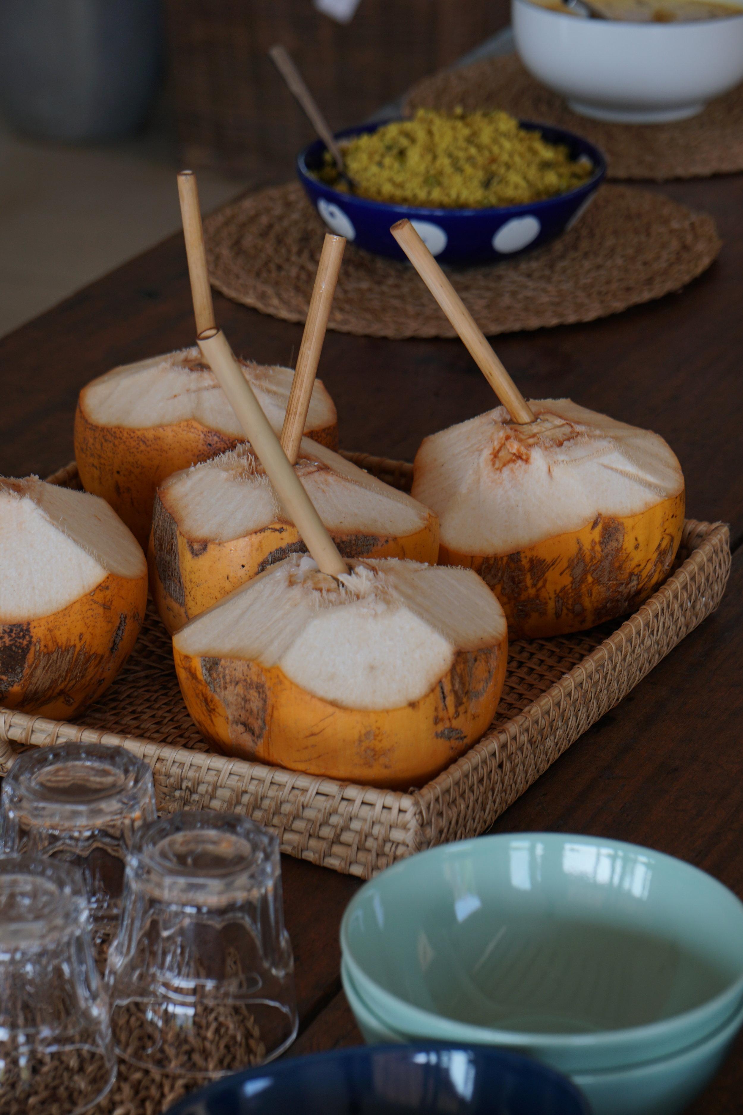 coconut king sri lanka yoga meditation ayurveda retreats budget women