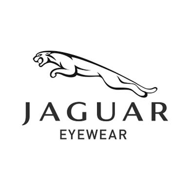Untitled-1_0014_jaguar-logo.png