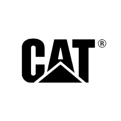 Untitled-1_0020_cat-logo-350pixels.png