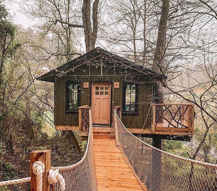 Tree house, North Carolina