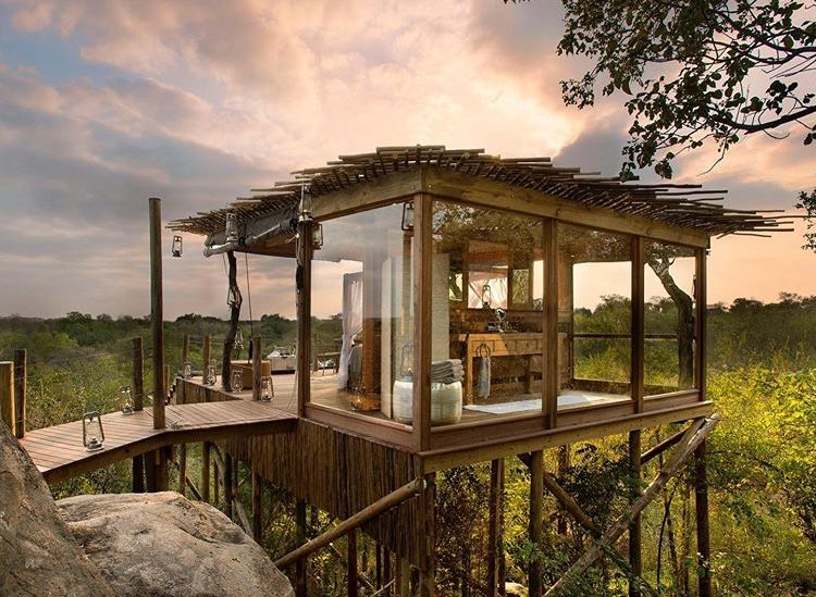 Tree house, Lion Sands Game Reserve, South Africa