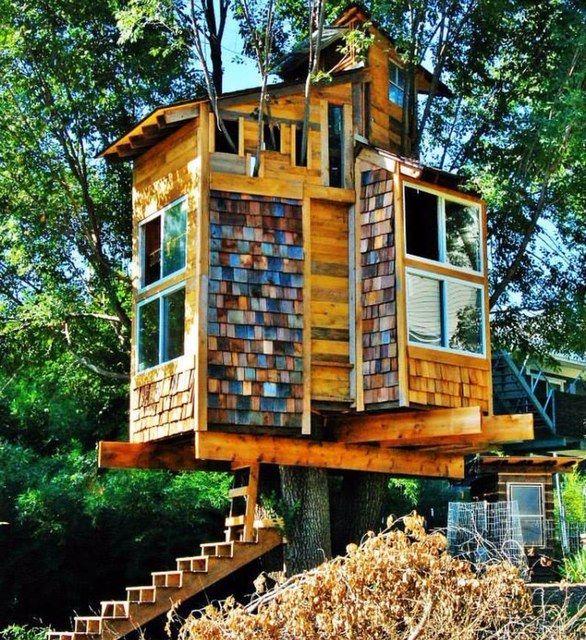 Tree house, Fayetteville, Arkansas