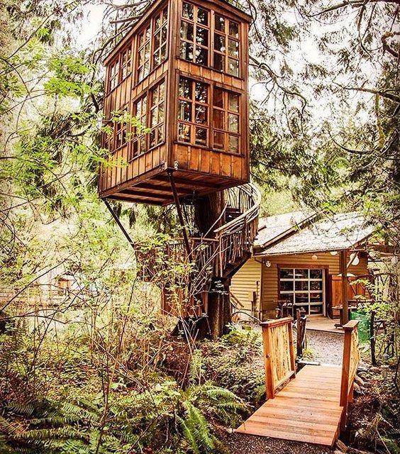 Tree house,Seattle, Washington