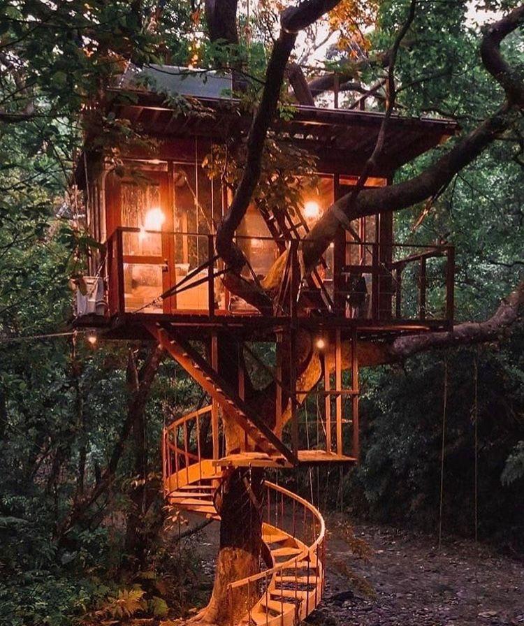 Tree house, Okinawa, Japan