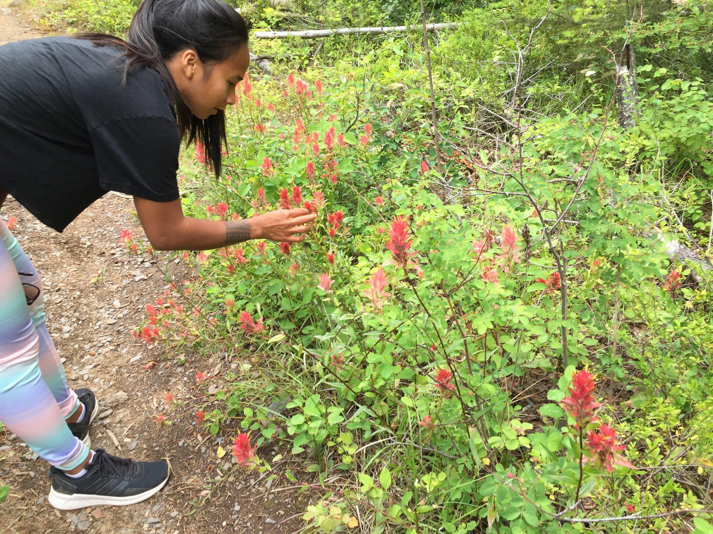 mount-rose-swanson-okanagan-valley-british-columbia-canada.jpg