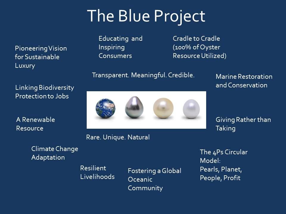 Blue Pledge.jpg