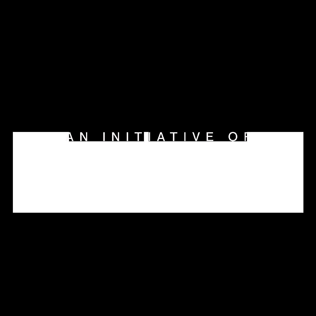 Brainerd Initiative.png