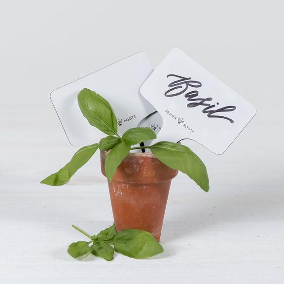 https://shop.designroots.com/products/plant-sticks