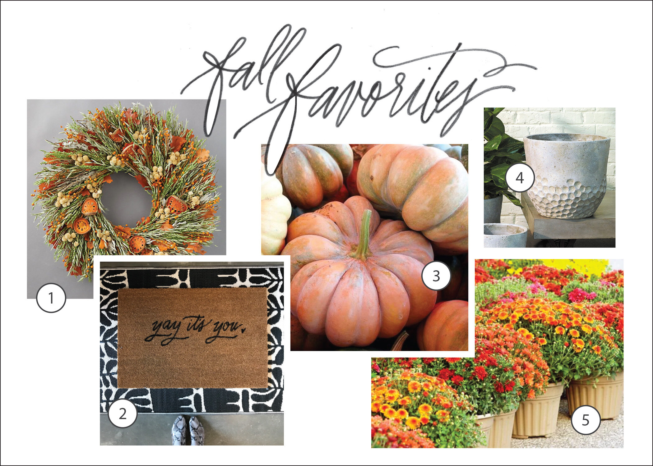 fall front door favorites.jpg