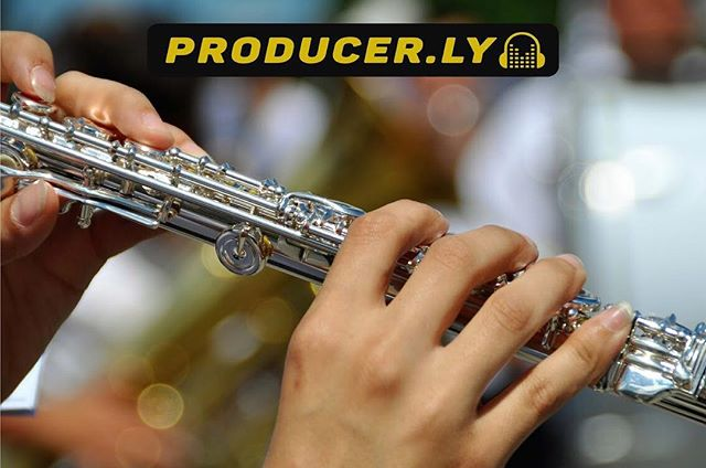 Flautists be the whistle of music 🎼! Coming to you soon, @Producer.ly 🎸A music revolution that will change the way we make music forever🎹💻🎶. Reserve your username below! . . . . . . . Website link @Producer.ly 's bio. 🌐: signup.producer.ly/prelaunch ☝️☝️☝️☝️🎷🎻🥁🎺👆👆👆👆 #musicvideos #flutist #DAW #Composer #MusicCollaboration #MusicRevolution  #pianist #singers #violinist #singersongwriter #electricguitars #acusticguitar #singercover #vocalistlife #femalevocalist #flutistsofinstagram #flutists #flautist #electricguitarist #DigitalAudioWorkstation #musicproducer #musicproduction #musicproducers #musicproductions  #flautista #songwriters #rappers #vocalist #acappella