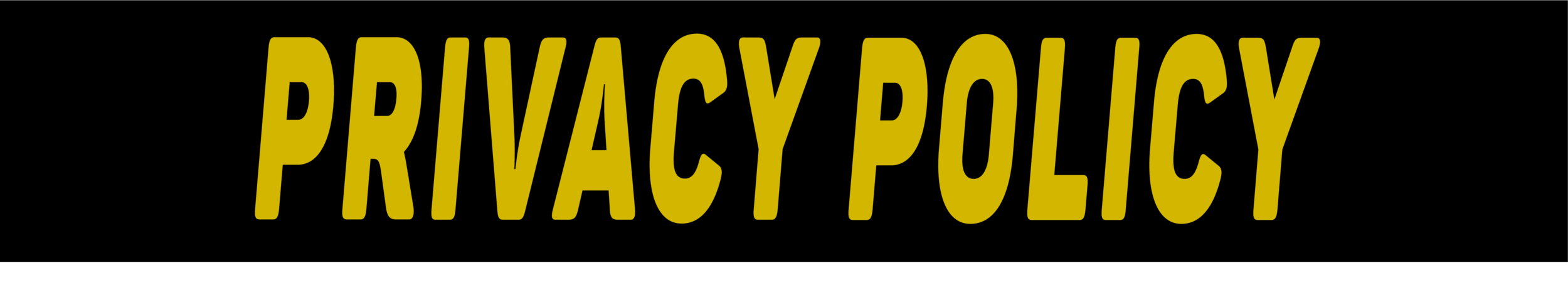 PrivacyPolicy_Producer.ly.png