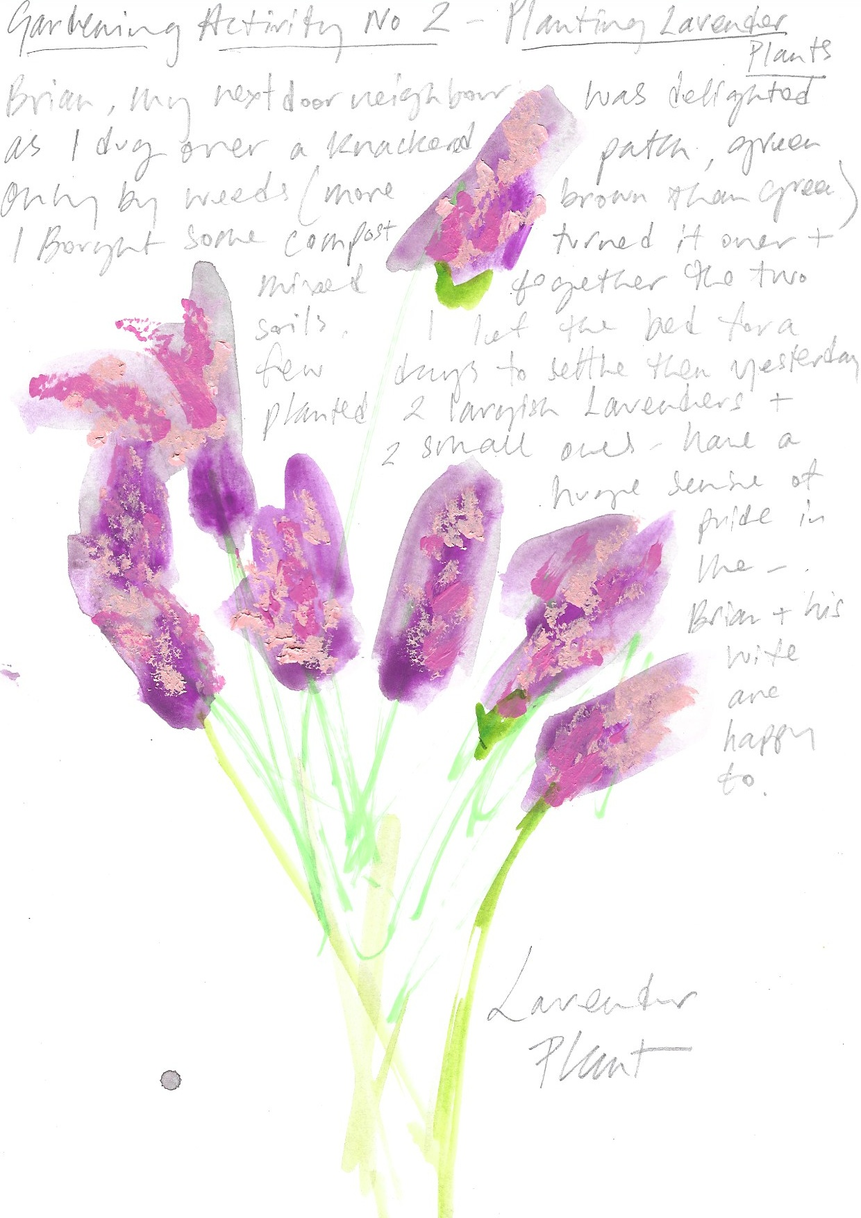 Diary of a non-gardener simply having a go, Samantha Barnes Artist