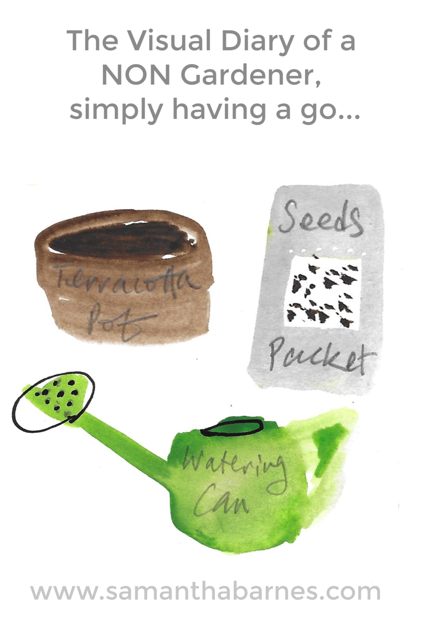 The Visual Diary of a NON Gardener, simply having a go.  Samantha Barnes Artist