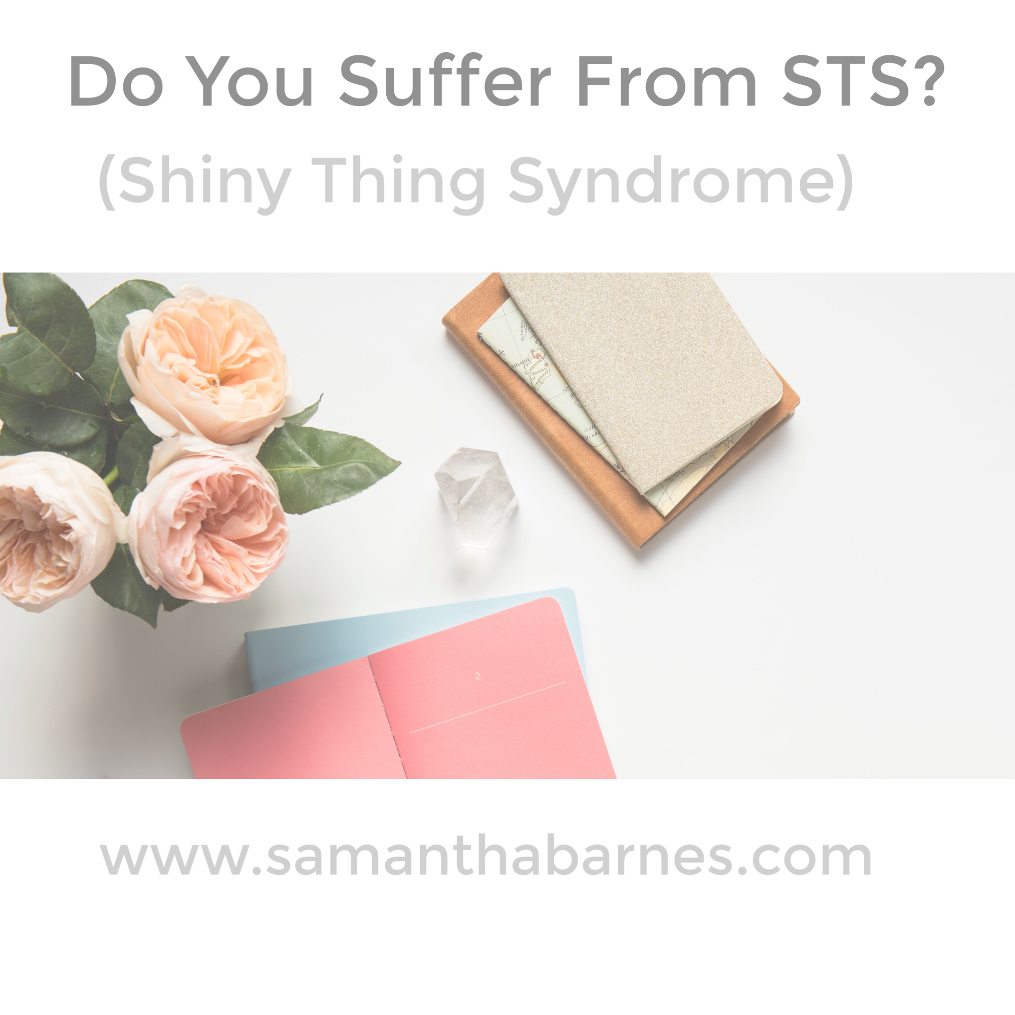 Shiny Thing syndrome by Samantha Barnes Artist