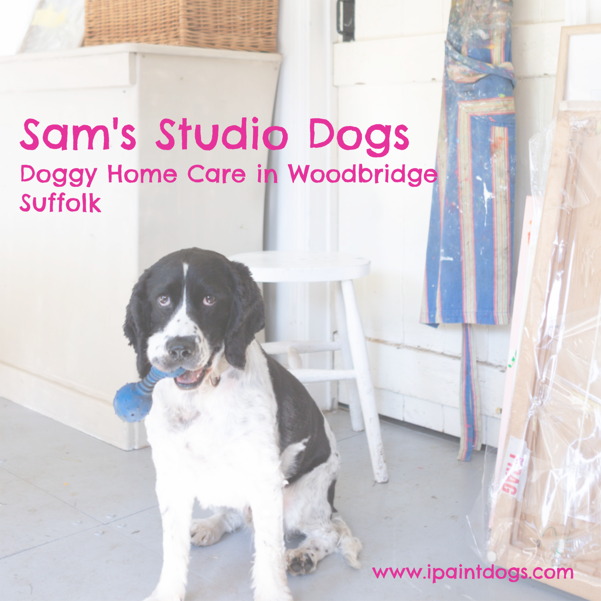 Sams Studio Dogs graphic.png